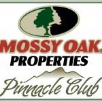 pinnacle-club1 signature logo